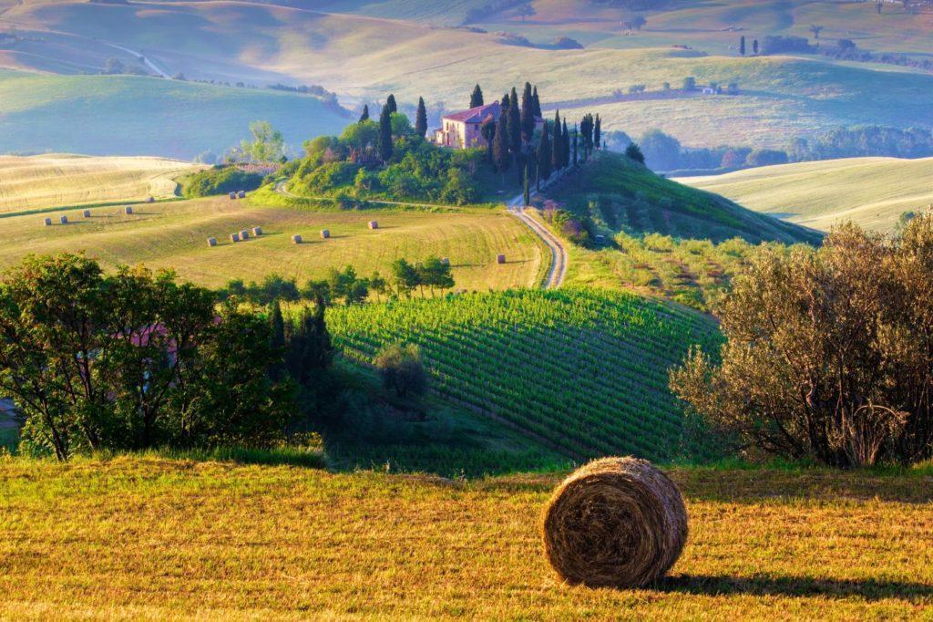 фермерское хозяйство в Тоскане