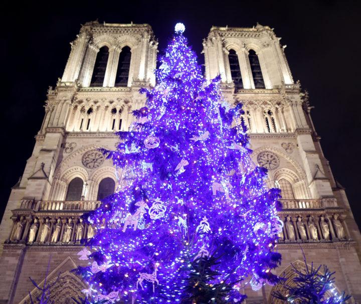 Рождественская елка у Нотр Дам