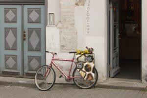 поездка в Таллин